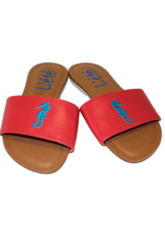 slide-caballito-coral